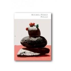 MICHEL PEREZ POLLO